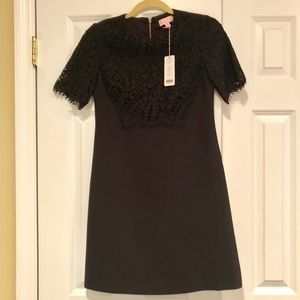 Ted Baker Black Dress with Lace Detail